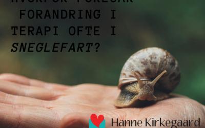 Hvorfor foregår forandring i terapi ofte i sneglefart?